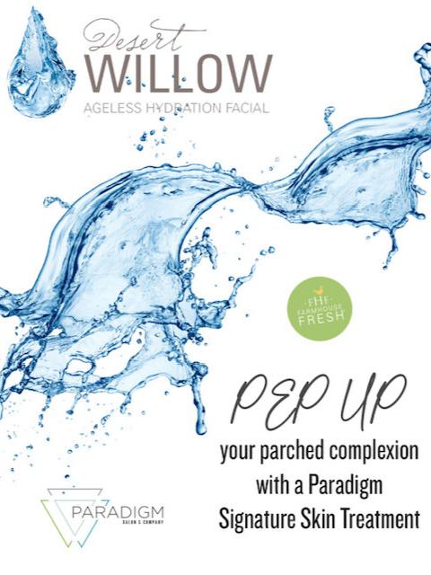 Paradigm Salon Special